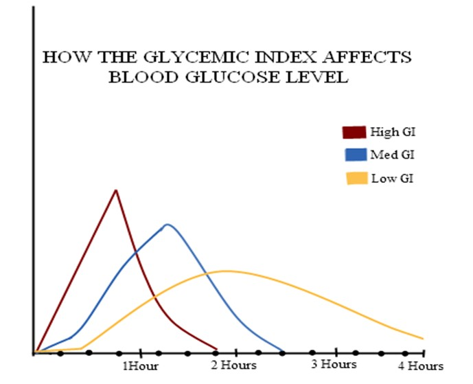 How Quickly High,Low GI Foods Raise BG
