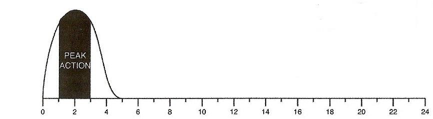 Rapid-Acting Insulin Curve